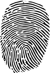 Fingerprints of the future?
