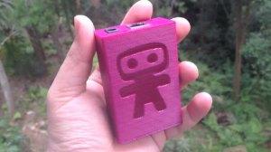 Small pink box with a ninja on it