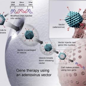Bad Genes? Hack Them With Virus Therapy